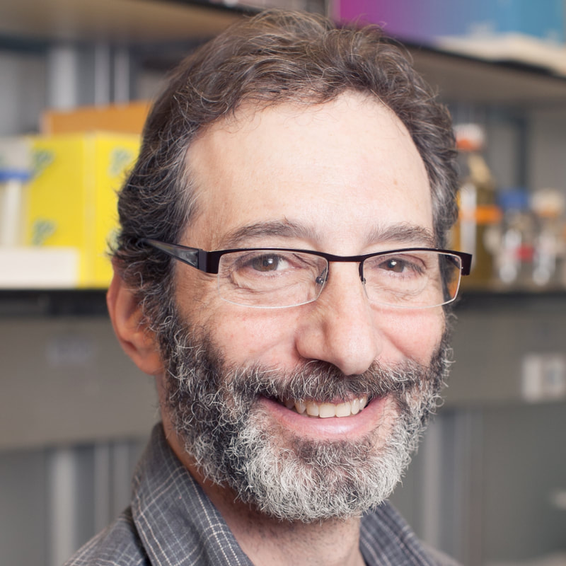 Headshot of Ken Birnbaum, PhD
